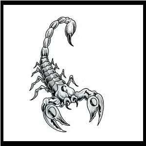 scorpio-tattoos-2.jpg